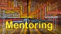 Få en mentor fra TDC, Novo Nordisk, SKAT eller Københavns Kommune