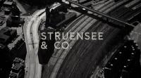 Toplederrådgivning i det offentlige hos Struensee & Co.