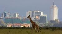 Østafrika – fremskridt eller demokratisk forfald?